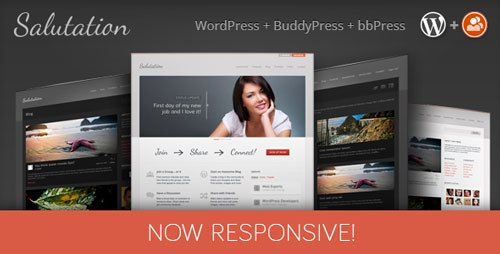 Download Salutation v3.0.7 Responsive BuddyPress WP theme