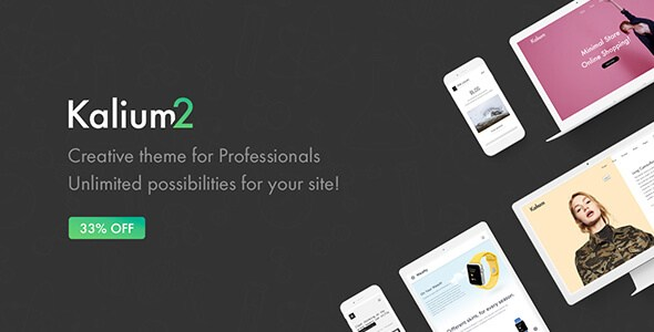 Kalium v2.0.3 – Creative WordPress Theme for Professionals