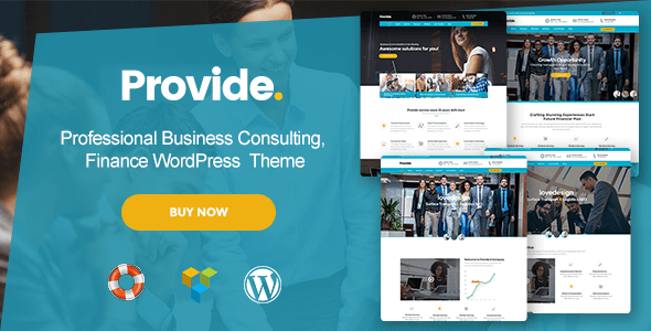 Provide v1.0 – Professional Business Consulting, Finance WP…